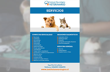 Instituto Neurológico Veterinario